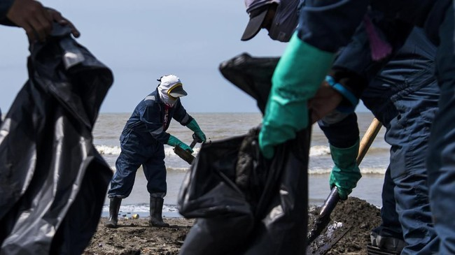 Warga membantu mengumpulkan ceceran minyak mentah di Pantai Mekarjaya, Karawang, Jawa Barat, Kamis (8/8/2019). (ANTARA FOTO/Sigid Kurniawan/ama)