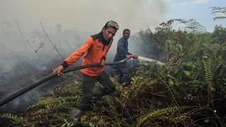 BPBA Sebut 99 Persen Karhutla di Aceh sudah Padam