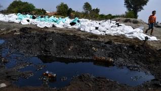 Kandungan Minyak Bocor Pertamina Ancam Biota Laut