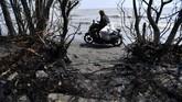 Warga membawa karung berisi ceceran minyak mentah yang berhasil dikumpulkan di Pantai Tanjungsari, Karawang, Jawa Barat, Kamis (8/8/2019). (ANTARA FOTO/Sigid Kurniawan/ama)