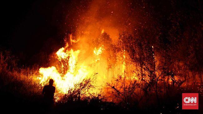 Kapolri: Siapa Saja Berhak Tangkap Tangan Pembakar Hutan