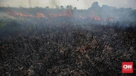 Warga Pekanbaru Tewas di Hutan Diduga Akibat Asap Karhutla