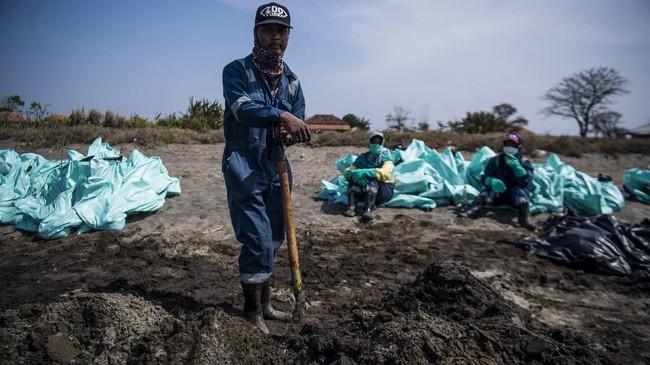 Pertamina menyatakan hingga 7 Agustus 2019, total minyak mentah yang tercecer dan telah dikumpulkan di pesisir pantai mencapai 1.047.386 karung atau seberat 4.915 ton dengan estimasi oil spill content per karung maksimal 10 persen. (ANTARA FOTO/Sigid Kurniawan/ama)