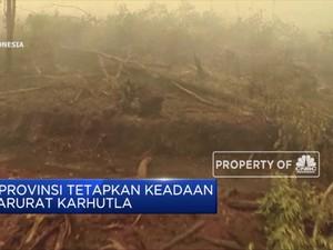 6 Provinsi Tetapkan Keadaan Darurat Karhutla