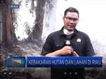 Upaya Pemadaman Kebakaran Hutan Riau