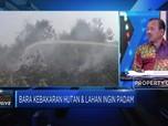 Musim Kemarau, 6 Provinsi Siaga Darurat Kebakaran Hutan