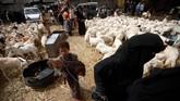 Jelang Idul Adha, 'pemandangan' pasar hewan kurban kerap mewarnai kota-kota di penjuru dunia, salah satunya yang terlihat di Palestina.(REUTERS/Mohamed al-Sayaghi)
