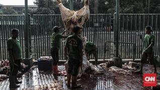 Global Qurban-ACT Tebar Manfaat Kurban ke Jutaan Penerima