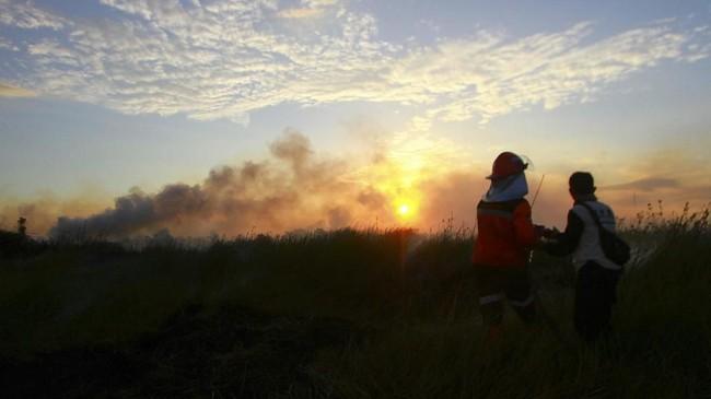 Petugas Badan Penanggulangan Bencana Daerah (BPBD) Kalsel berusaha memadamkan semak belukar yang terbakar saat terjadi kebakaran lahan gambut di Banjarbaru, Kalimantan Selatan, 2 Agustus 2019. Karhutla kerap mengisi pemberitaan Indonesia saat musim kemarau. (ANTARA FOTO/Bayu Pratama S)