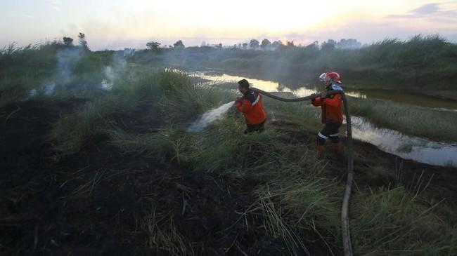 Petugas Badan Penanggulangan Bencana Daerah (BPBD) Kalsel berusaha memadamkan semak belukar yang terbakar saat terjadi kebakaran lahan gambut di Banjarbaru, Kalimantan Selatan, 2Agustus 2019. Pemerintah negeri jiran terus memantau situasi karhutla di wilayah Indonesia, terutama di Sumatra dan Kalimantan. (ANTARA FOTO/Bayu Pratama S)