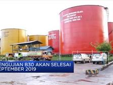 Jokowi 'Kekeuh' Terapkan B30 pada 2020