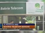Awal Sejarah Bakrie Telecom