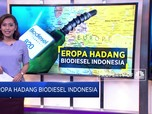 Cara Eropa Hadang Biodiesel Indonesia