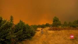 VIDEO: Athena Diselimuti Kabut Asap Kebakaran Lahan