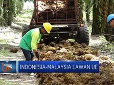 Tarif Biodiesel Berlaku, Indonesia-Malaysia Lawan Uni Eropa