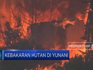 Kebakaran Hutan di Yunani, Empat Desa Mengungsi