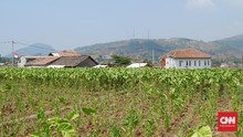 Pemeriksaan Dana Desa Jadi Program Prioritas BPK