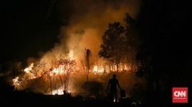 4 Kandungan Zat Berbahaya Asap Kebakaran Hutan