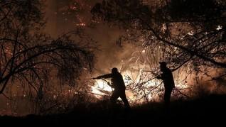 Kawasan Hutan di Lereng Gunung Merapi Terbakar