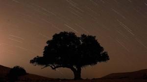 FOTO: Terang Langit Lewat Hujan Meteor Perseids