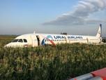 Pesawat Rusia Mendarat Darurat Karena Burung