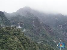 Cerita Gunung Emas Wabu Rp 200 T yang Mau Digarap Antam