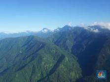 Bukan Grasberg, Antam Mau Garap Gunung Emas Perawan Papua!