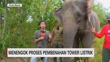 VIDEO: Menengok Proses Pembenahan Tower Listrik