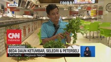 VIDEO: Beda Daun Ketumbar, Seledri & Peterseli