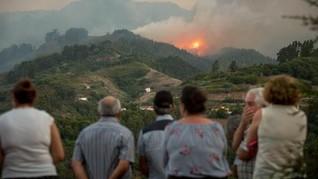 Karhutla di Pulau Milik Spanyol, 5.000 Orang Dievakuasi