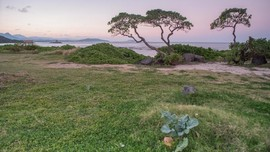 Tips Liburan ke Hawaii Bersama Keluarga