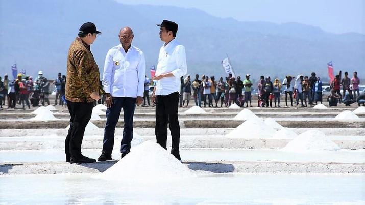Jokowi meninjau tambak garam eks tanah Hak Guna Usaha (HGU), di Desa Nunkurus, Kecamatan Kupang Timur, Kabupaten Kupang, Rabu (21/8)  (dok. Kementerian Perindustrian)