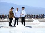 RI Kembali Impor Garam, Janji Swasembada Jokowi Dipertanyakan