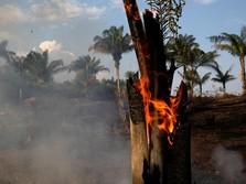 Kacau! 9 Kepala Daerah Tak Peduli Soal Kebakaran Hutan