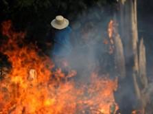 Presiden Brasil Jadi Biang Kerok Terbakarnya Hutan Amazon?