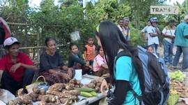VIDEO: Berburu Kemiri di Pasar 'Mingguan' Flores