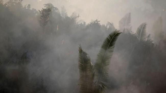 INPE menuturkan citra satelitnya menemukan 9.507 titik api baru di Brasil. (REUTERS/Ueslei Marcelino)