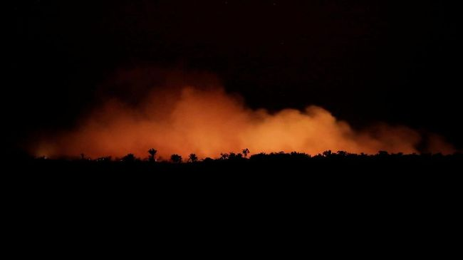 Sejumlah Titik Kebakaran Baru Amazon Terpantau Pesawat Brasil