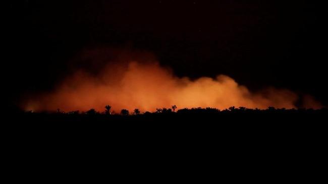 Langkah itu menuai kekhawatiran internasional akan potensi meningkatnya deforestasi. (REUTERS/Ueslei Marcelino)