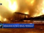 Kebakaran Hutan Amazon di Brazil Terus Meluas
