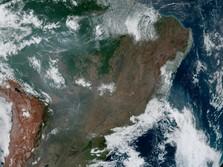 Hutan Amazon Terbakar, Madonna & CR7