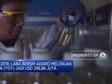 H1-2019, Laba Bersih Adaro Melonjak 52% Jadi USD 296,86 Juta