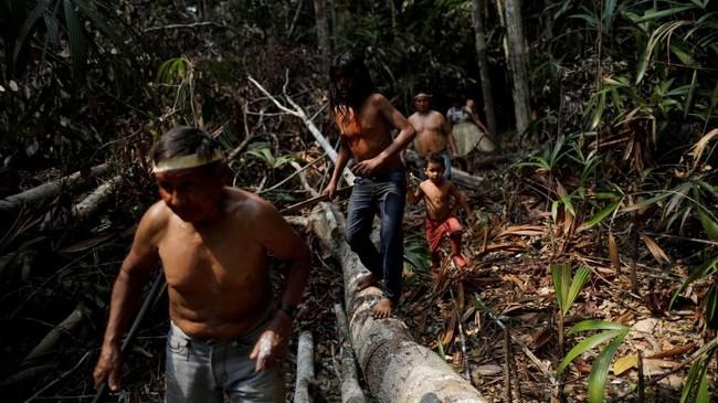 Penebangan hutan dan alih fungsi lahan menjadi musuh terbesar suku Mura selama mendiami hutan hujan Amazon.(REUTERS/Ueslei Marcelino)