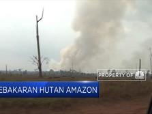 Kebakaran Hutan Amazon Terus Meluas