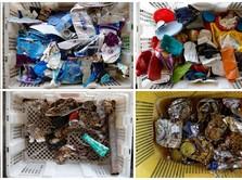 Terungkap! Ini Pihak yang 'Datangkan' Sampah Impor Masuk RI