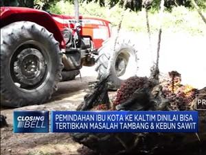 Luhut: Pemindahan Ibu Kota Bisa Tertibkan Tambang & Sawit