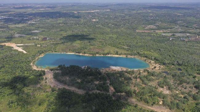 LSM: Tukar Guling Area Hutan Ibu Kota Baru Jadi Titik Korupsi