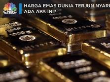 Harga Emas Dunia Terjun Nyaris 1%, Sinyal Apakah Ini?