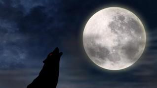 Cara Ilmuwan Eropa Mengubah Debu Menjadi Oksigen di Bulan
