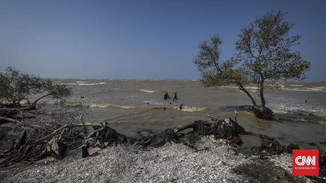 Kondisi terkini pesisir pantai kawasan Sungai Buntu akibat tumpahan minyak mentah, Rabu (21/8). Bagi mereka yang ingin datang ke pantai diwajibkan mengenakan masker dan sepatu boots agar tak terkena dampak limbah minyak. (CNN Indonesia/Adhi Wicaksono)